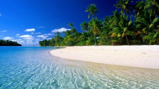 Magnifique plage de Guadeloupe en hiver