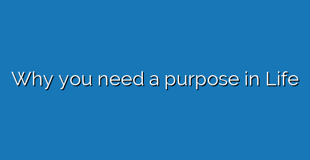 Why you need a purpose in Life