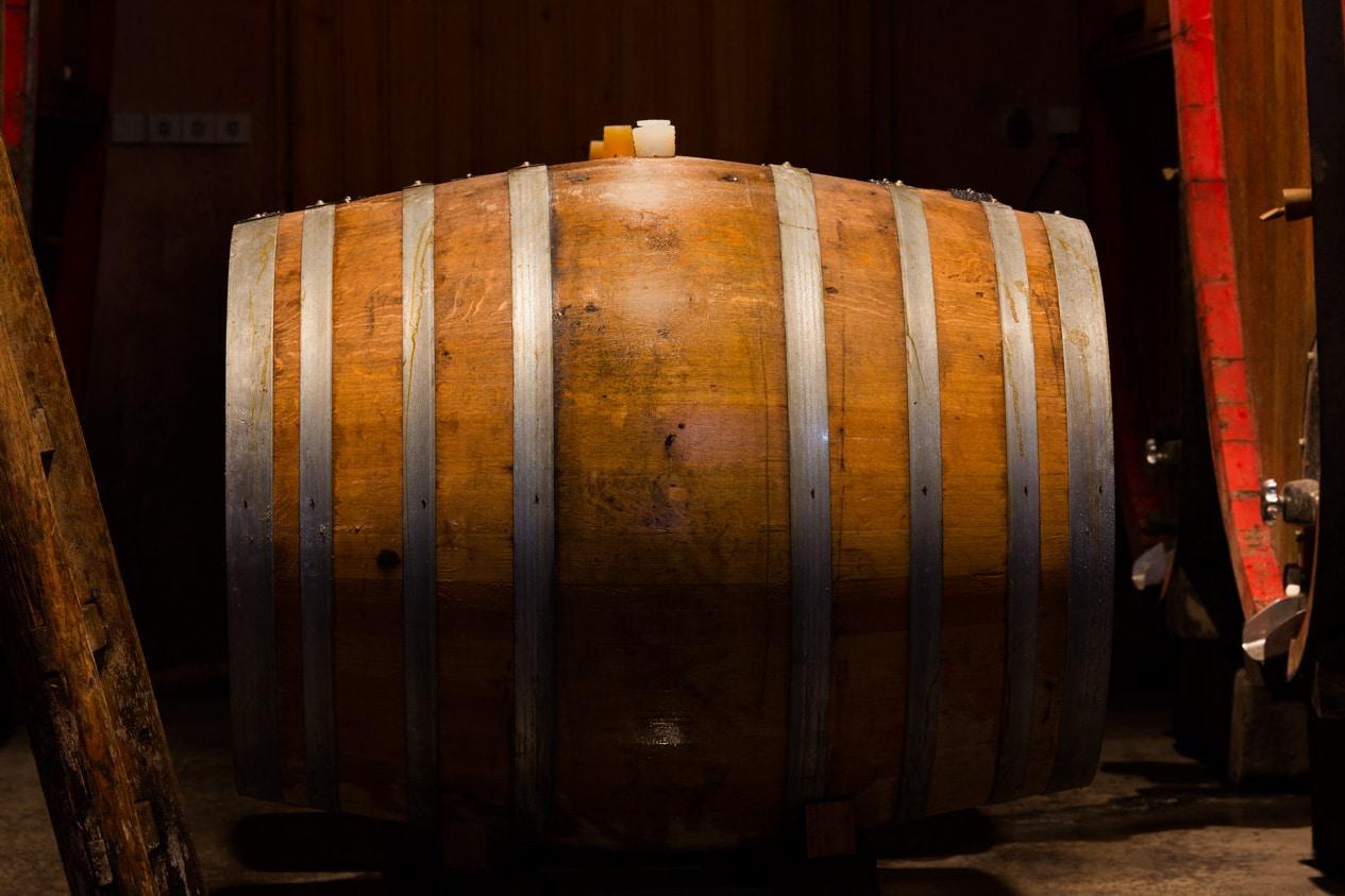 fermentation-vignes-Faby