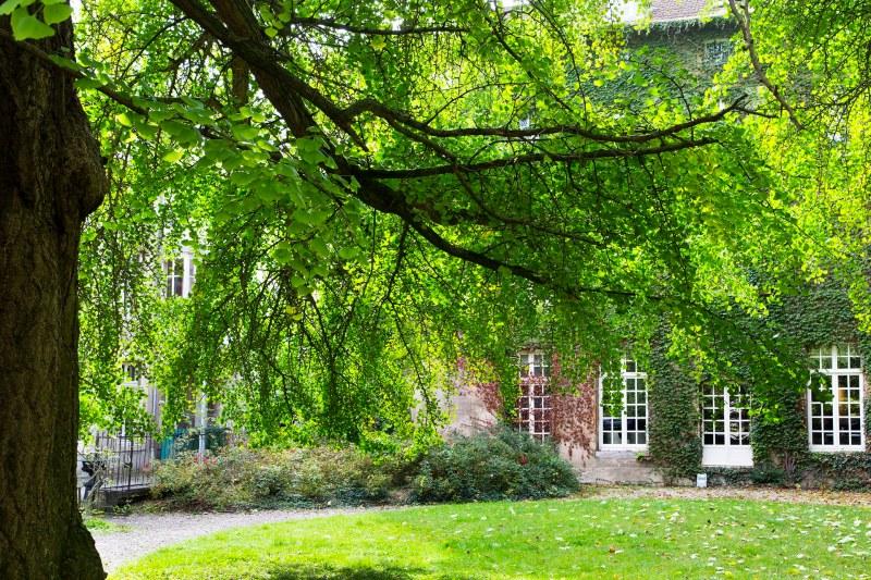 Maison dans le parc chêne