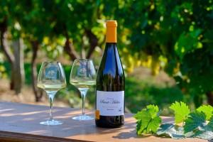 photos d'une bouteille de vin blanc