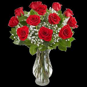 12 premium roses