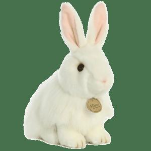 White Angora Rabbit