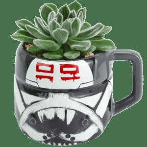 Star Wars Wrecker Succulent