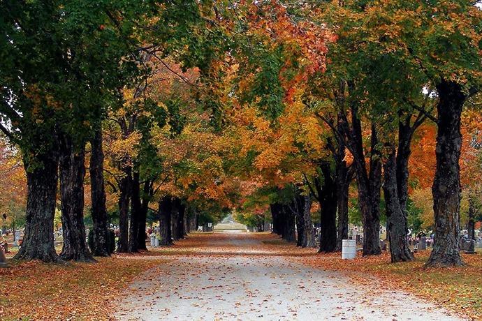 Maplewood Cemetery in Harrison_2301908077720520611