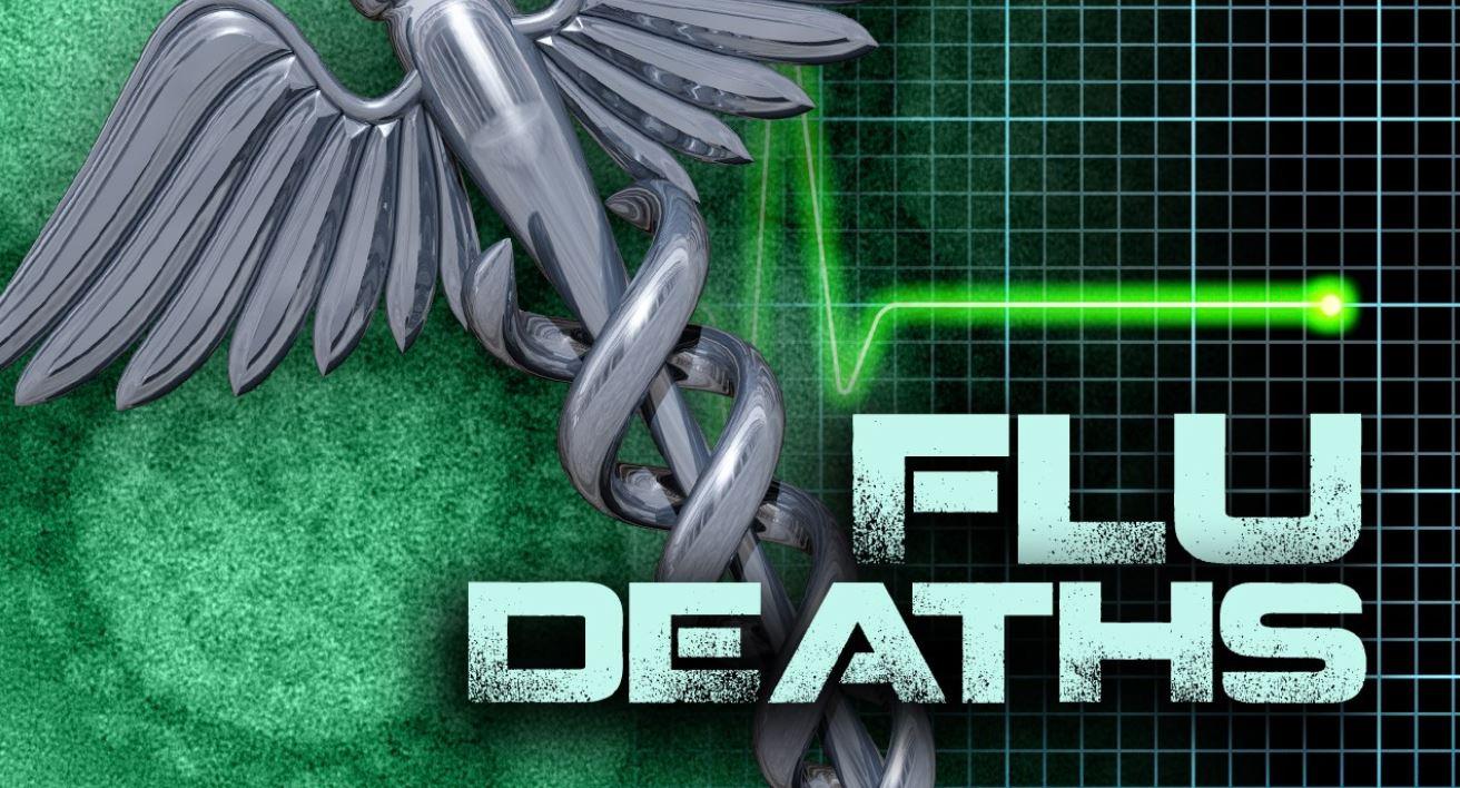 Flu Deaths 1_1554239395901.JPG.jpg