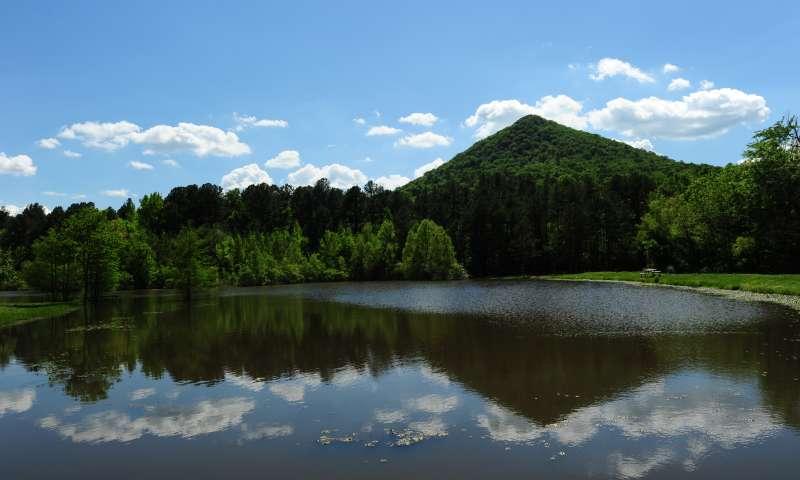 Pinnacle Mountain_1559337897731.jfif-118809318.jpg