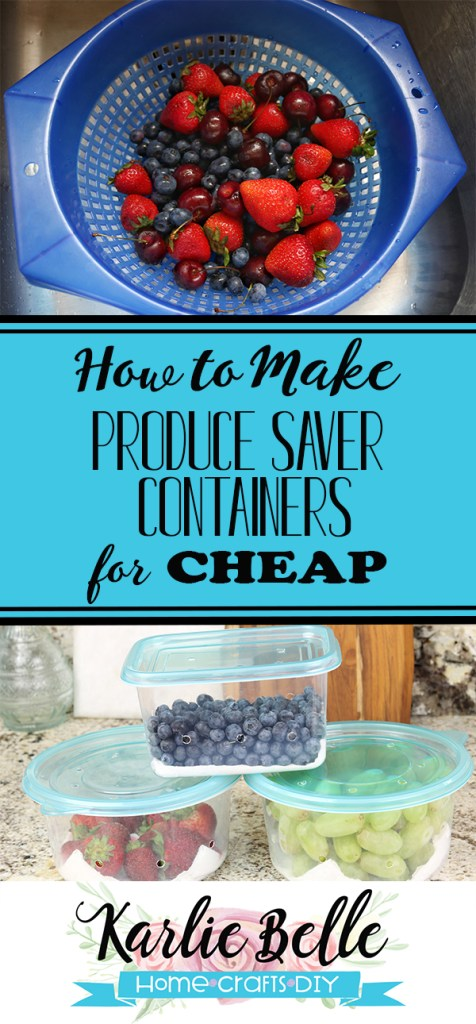 Produce Saver Containers