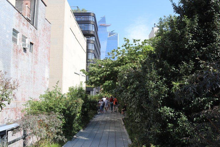 A view of the High Line Walk - lots of foliage between buildings