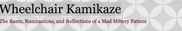 wheelchair-kamikaze-blog