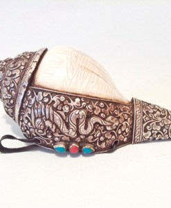 Tibetan Buddhist Conch Shell