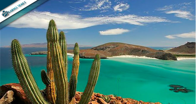 Tours Baja California