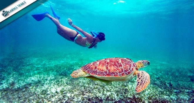 SNORKELING AKUMAL Y CENOTE - Riviera Maya
