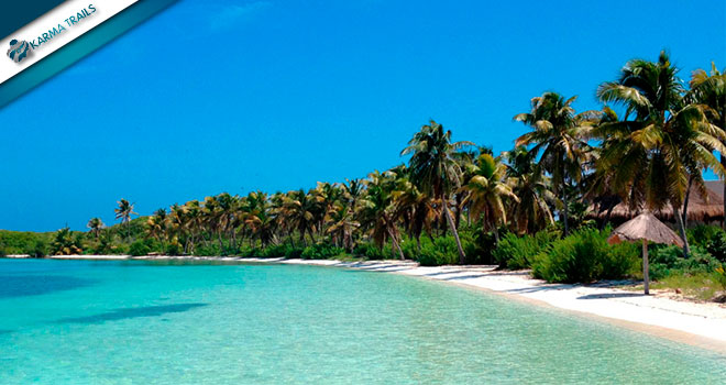 Tour Contoy and Isla Mujeres