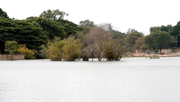 Must-visit Lakes in Bangalore