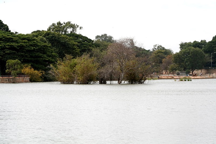 Sankey Tank, Lakes in Bangalore