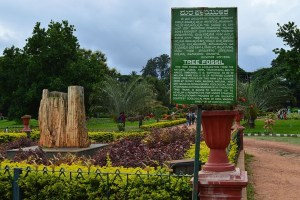 Lalbagh – The Natural Beauty in Bangalore That Draws Attention
