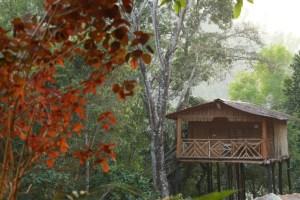 Silent Valley Resort