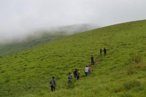 All You Need to Know About the Brahmagiri Trek