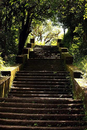 Kundadri Hills trek, Agumbe