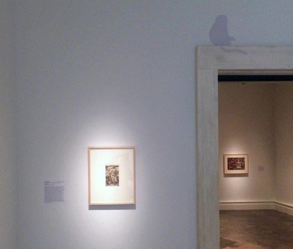Albright-knox Menagerie Exhibition - Karn Creative