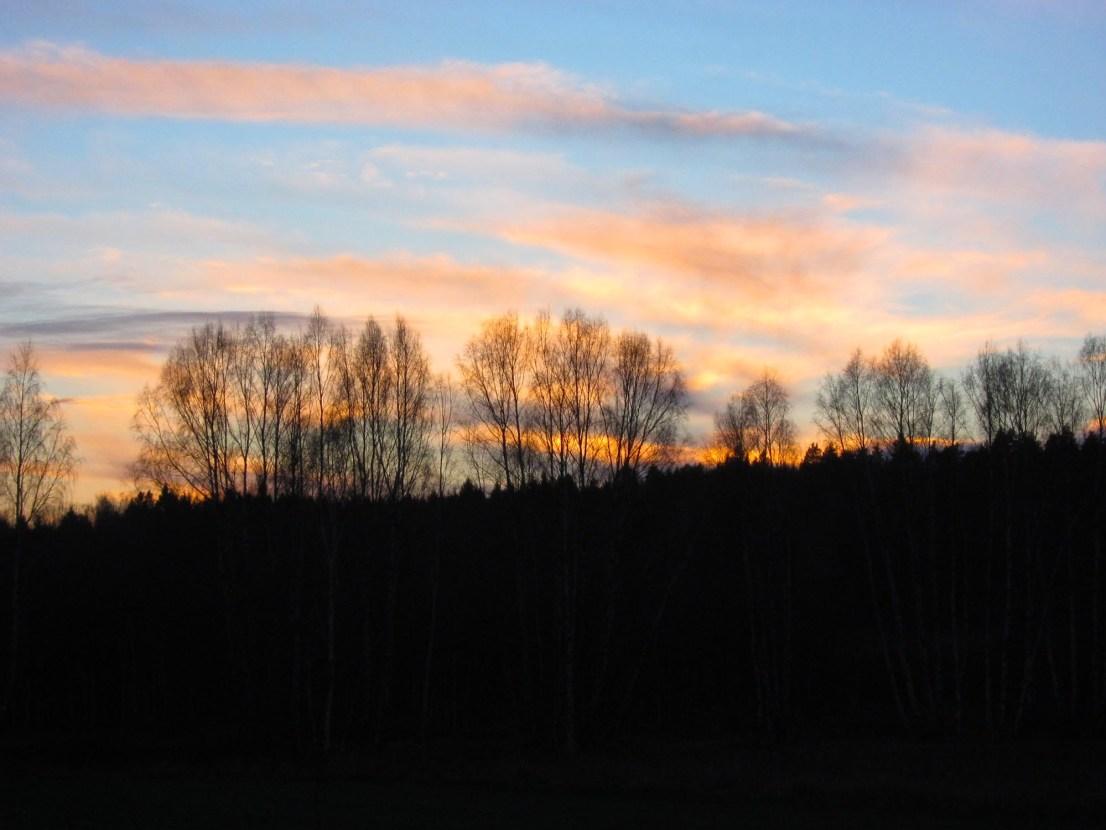 2015-01-18 jakt 09