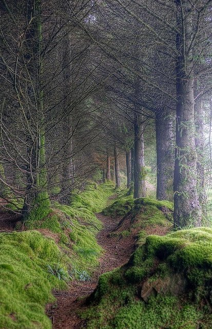 Isle-of-Arran-Scotland