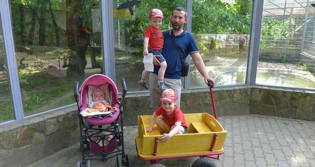 Állatkertben a család