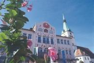 Arik-Brauer-Rathaus-(c)-Cescutti-900x600