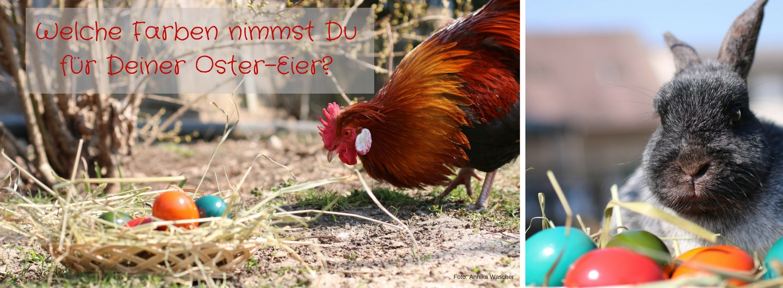 Welche Farben nimmst Du für Deine Oster-Eier? - Foto: Annika Wascher