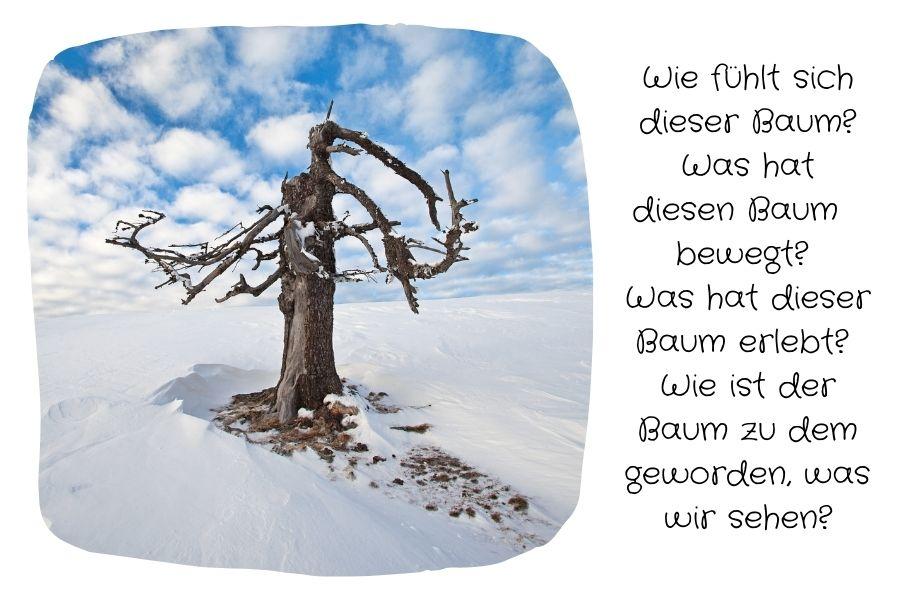 Gedanken zu einem Baum