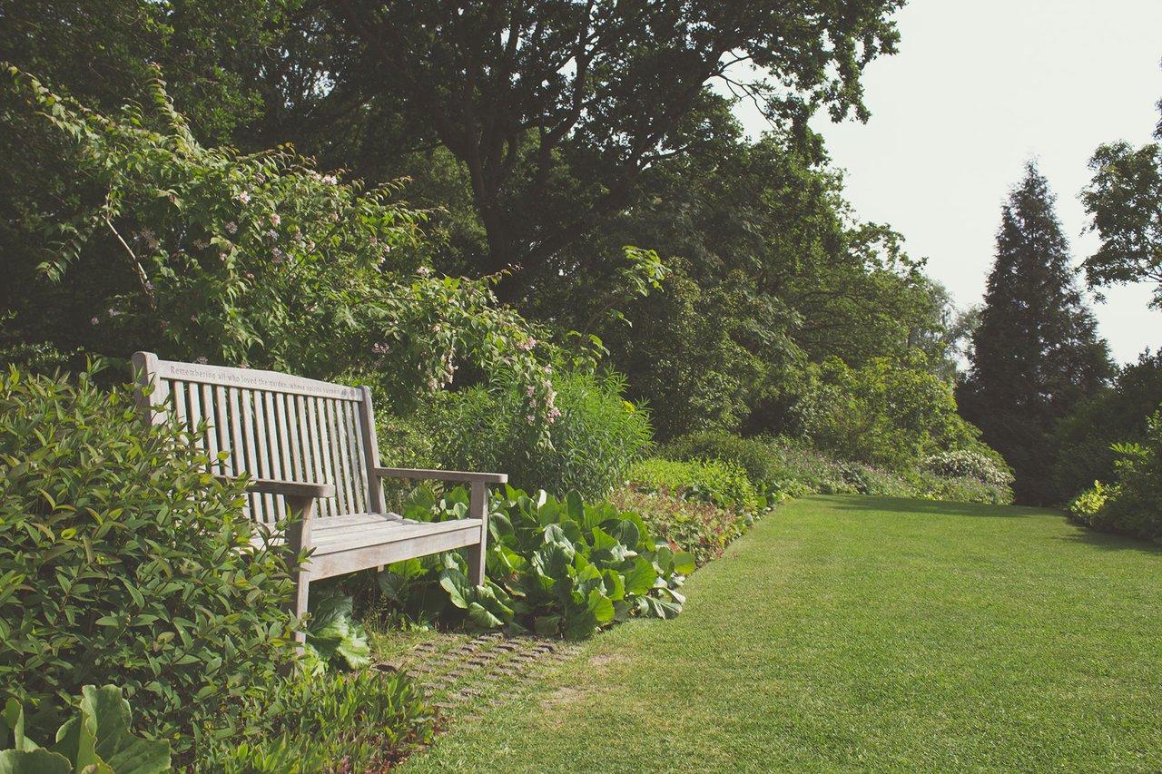 bench lawn backyard