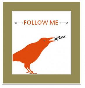 Follow me on twitter (c) Sylvia Nickel