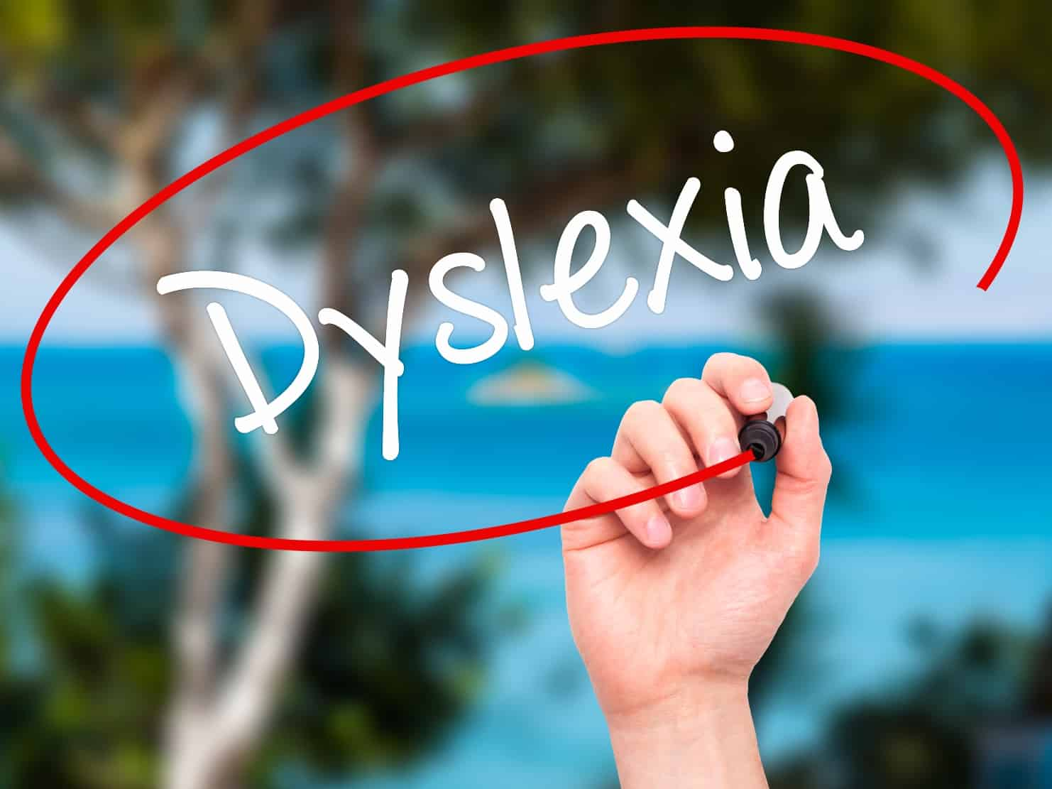 New Dyslexia Law May Lead to Early Identification and Treatment for Virginia Schoolchildren