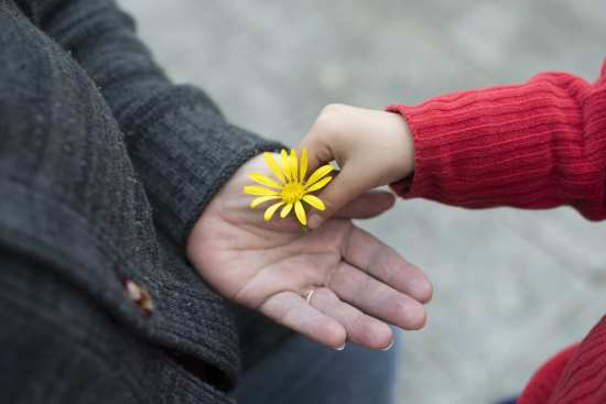 child hands elderly woman a daisy