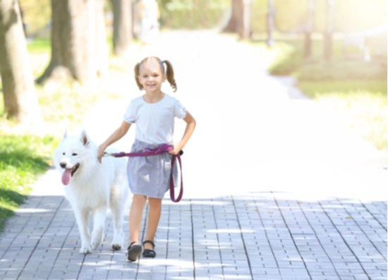girl walks dog in park