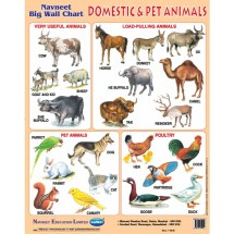 Domestic Wild Animals Vs Animals - Year of Clean Water