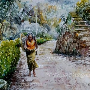 Online, Art, Art Gallery, Online Art Galley, Sri Lanka, Karunagama, Watercolor, Water Colour, Old People, Old People Paintings, Watercolor Portraits, Portrait Paintings, Srilanka tamils, Tamil women, Tamil tea pluckers, Sri lanka Tea industry, Sri lanka paintings,