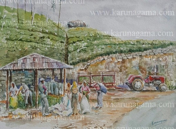 Art, Art Gallery, Karunagama, Muster sheds, Online, Online Art Galley, Sri Lanka, Sri lanka laborers, Sri lanka Paintings, Sri Lanka Tea, Sri lanka tea estate workers, Sri lanka Tea Estates, Tamil laborers, Tamil people in Sri lank, Tea indsutry, Water Colour, Watercolor