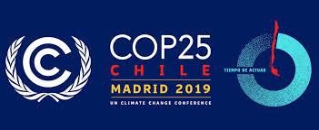 COP 25