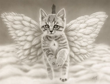Fall Kittens Wallpaper Poems