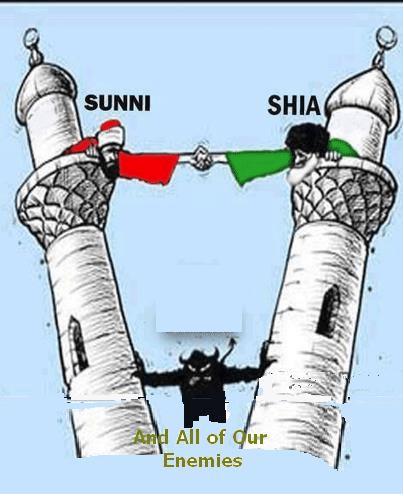 shia sunny cartoon