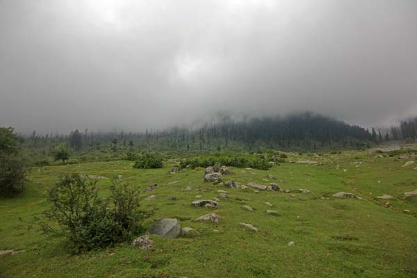 Mesmerizing Meadow:  Tosa Maidan is a historic valley which once was a city. It is the collection of three meadows: Pathra, Guttemarg and Badshamarg. Further on, there is spot called Kralmarg, where one can have a view of whole Srinagar.