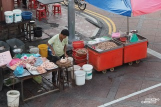 Workaway en Malasia