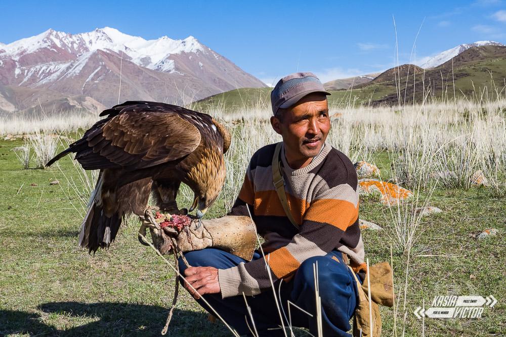 zwierzęta w Kirgistanie