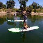 border collie dog stand up paddleboard sup pup whatiwore2day