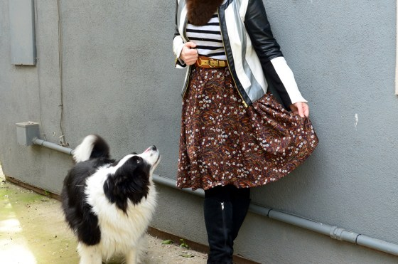 over 40 daily outfit blog border collie pattern mix ootd whatiwore2day