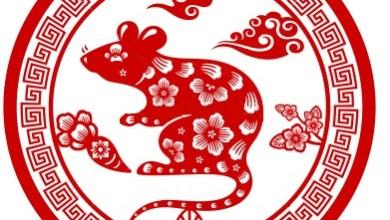 Photo of برج الفأر برجك الصيني توقعات عامة الصحة الحب الزواج الوظيفة