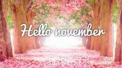 Photo of يوم 21 نوفمبر تشرين الثاني تاريخ ومعلومات الحظ وتوقعات الفلك والأبراج اليومية