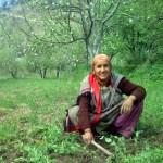 Kasol People